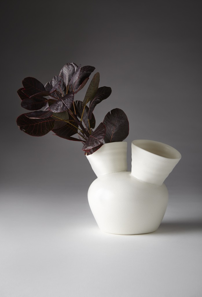 Speak Vase with Two_Jo Davies